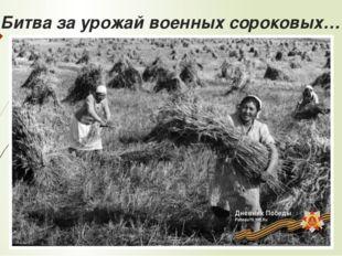 Битва за урожай военных сороковых…