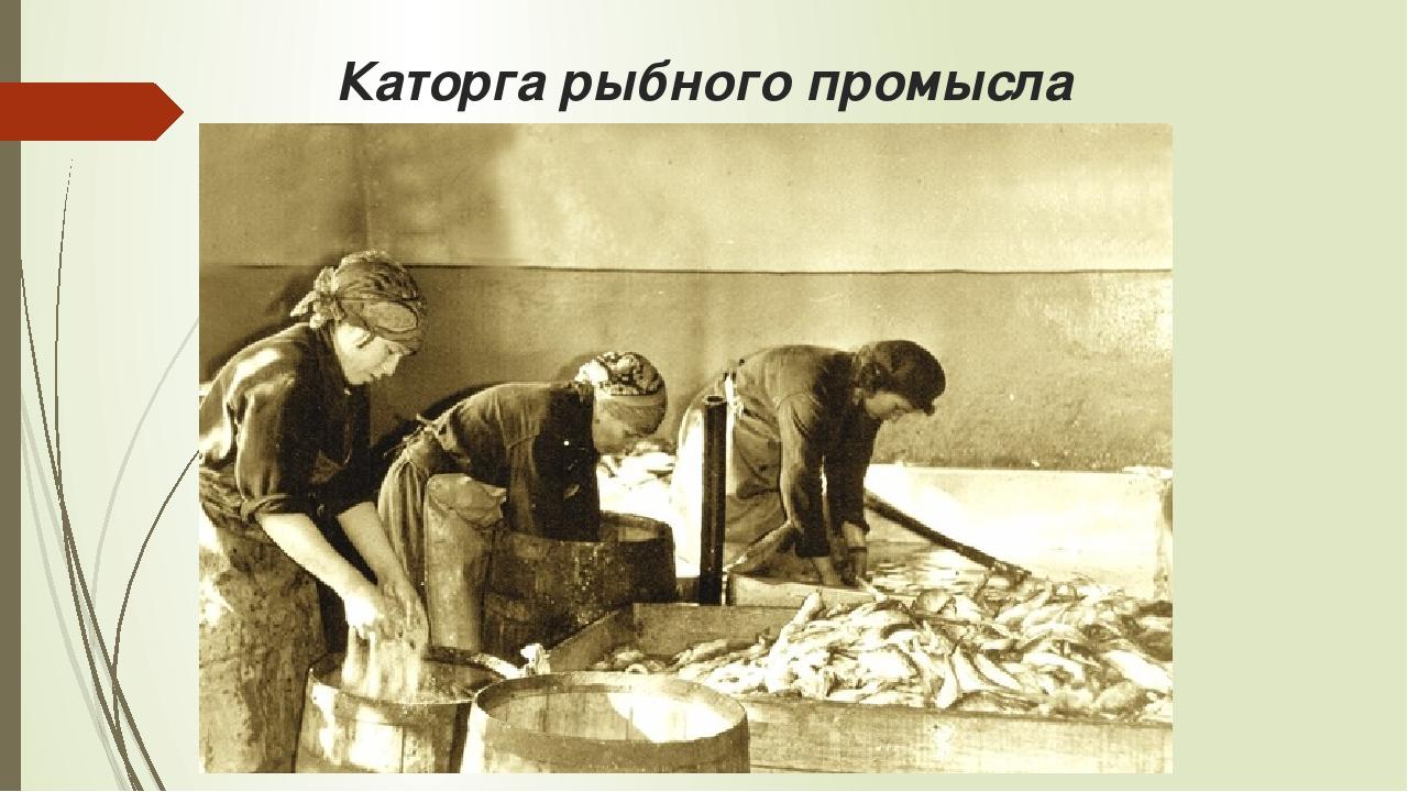 Каторга рыбного промысла