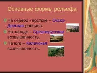 Основные формы рельефа На северо - востоке – Окско-Донская равнина. На западе