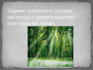 Задание: определите, сколько кислорода в среднем выделяет одно взрослое дерево.