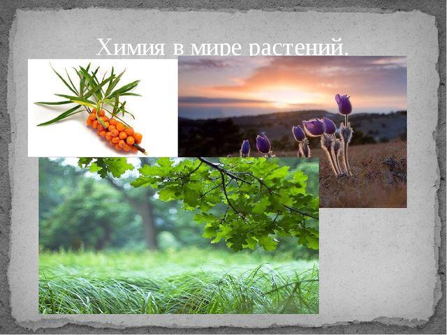 Химия в мире растений.