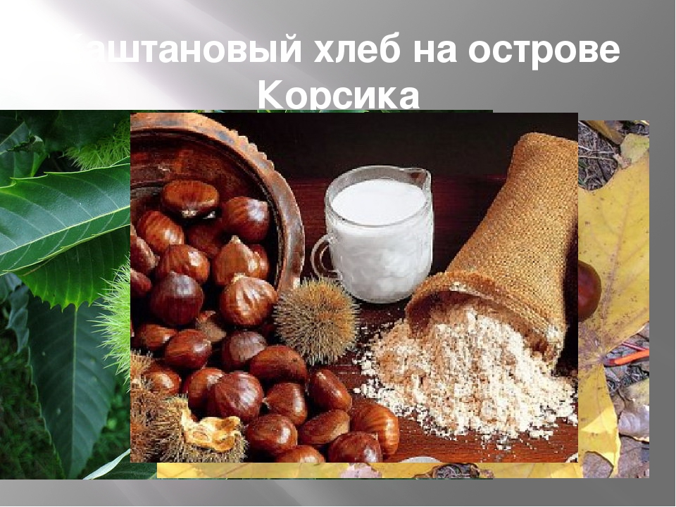 Каштановый хлеб на острове Корсика