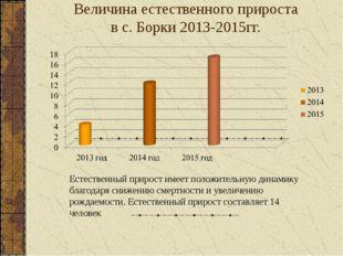 Величина естественного прироста в с. Борки 2013-2015гг. Естественный прирост