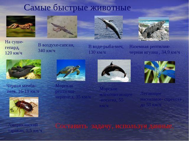 В воздухе-сапсан, 340 км/ч На суше-гепард, 120 км/ч В воде-рыба-меч, 130 км/ч...