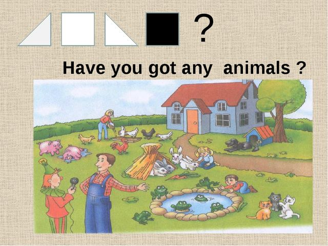 & ? Have you got any animals ?