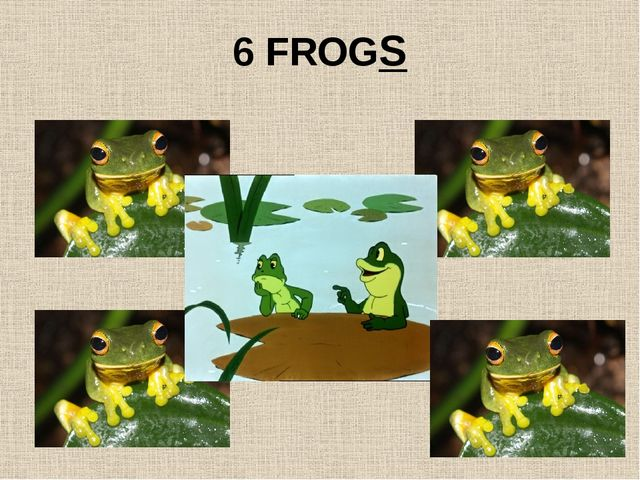 6 FROGS