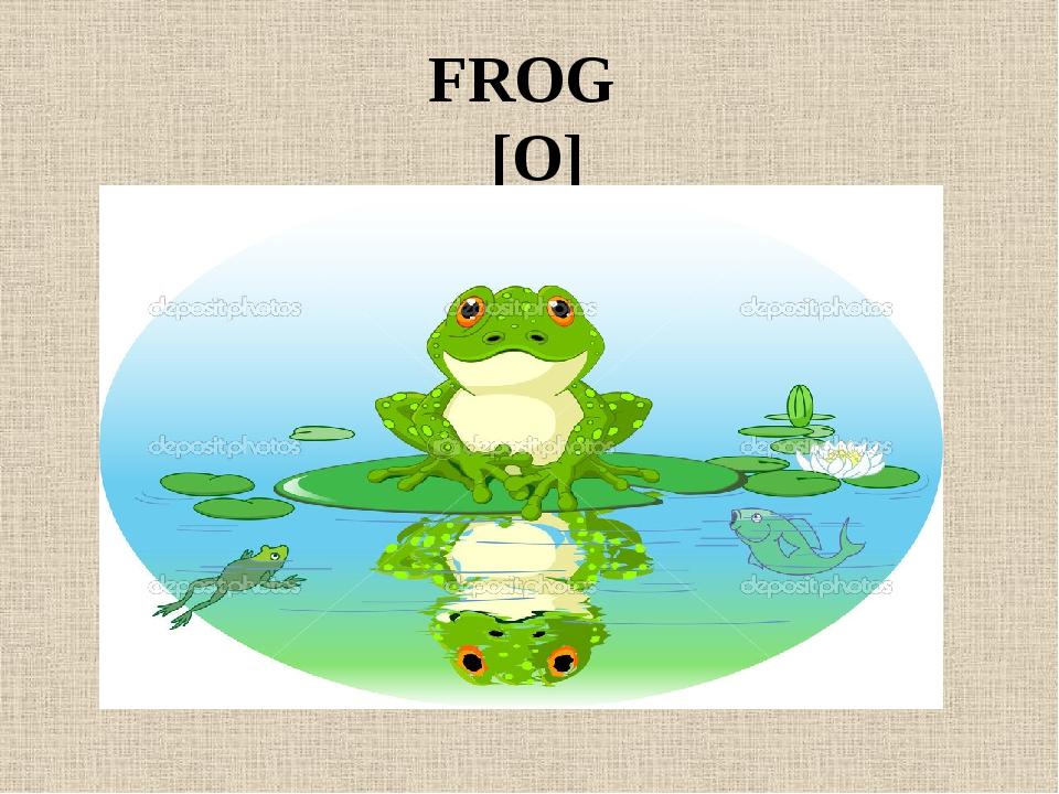 FROG [O]