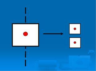 Размножаются простейшие делением пополам. Ось деления проходит в продольной и