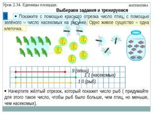 Урок 2.34. Единицы площади. МАТЕМАТИКА  Покажите с помощью красного отрезка