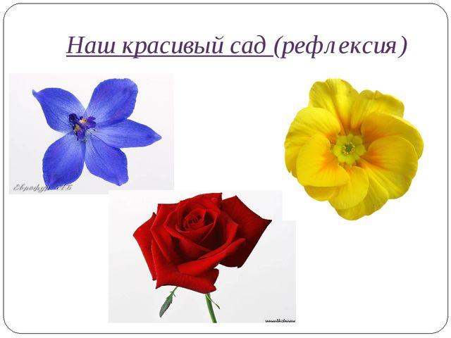 Наш красивый сад (рефлексия)