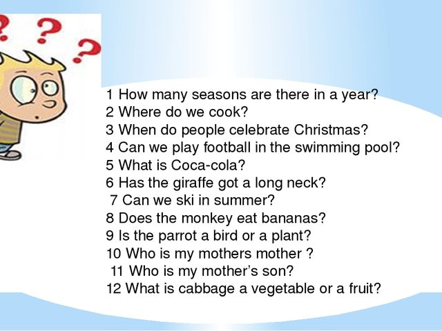 1 How many seasons are there in a year? 2 Where do we cook? 3 When do people...