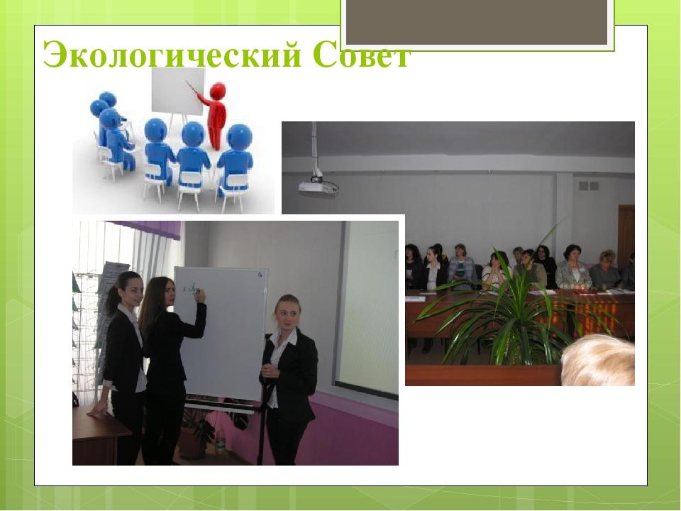 Экологический Совет