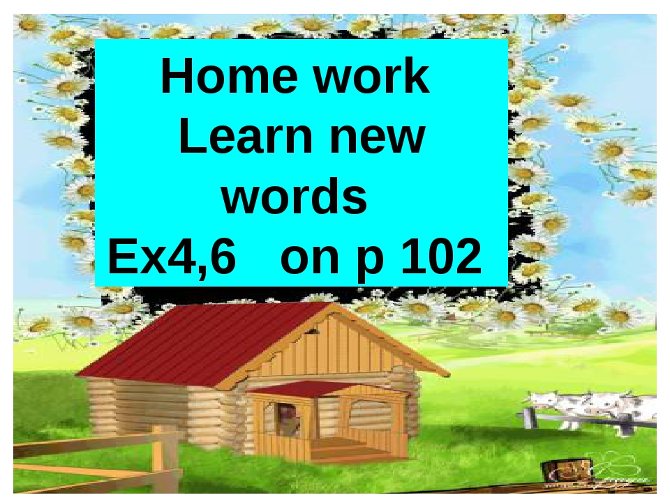 Home work Learn new words Ex4,6 on p 102