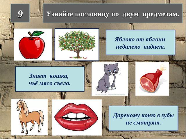 9 Узнайте пословицу по двум предметам. Яблоко от яблони недалеко падает. Знае...