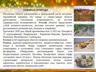 Калужская область расположена в центральной части восточно-европейской равнин
