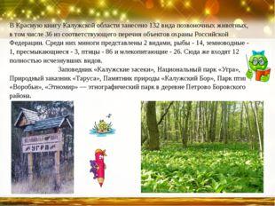 В Красную книгу Калужской области занесено 132 вида позвоночных животных, в т