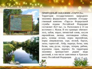 ПРИРОДНЫЙ ЗАКАЗНИК «ТАРУСА». Территория государственного природного заказника