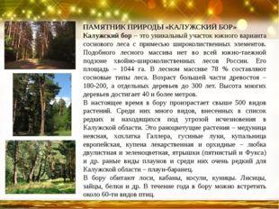 ПАМЯТНИК ПРИРОДЫ «КАЛУЖСКИЙ БОР» Калужский бор – это уникальный участок южног