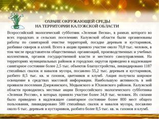 Всероссийский экологический субботник «Зеленая Весна», в рамках которого во в