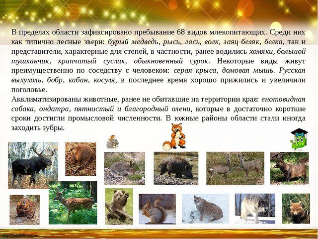 В пределах области зафиксировано пребывание 68 видов млекопитающих. Среди них...
