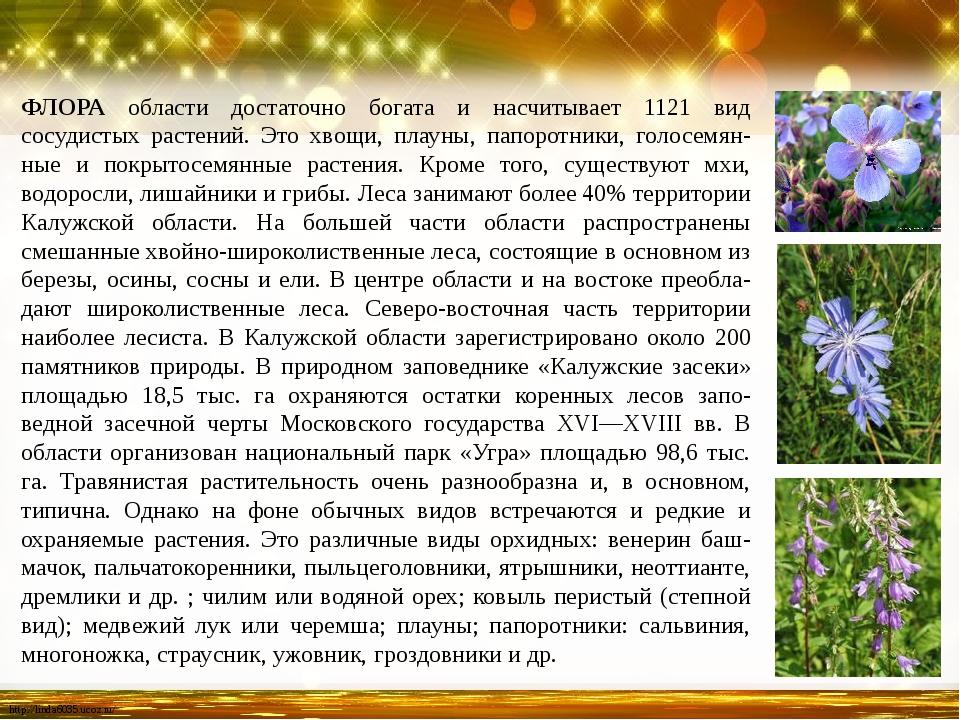 ФЛОРА области достаточно богата и насчитывает 1121 вид сосудистых растений. Э...