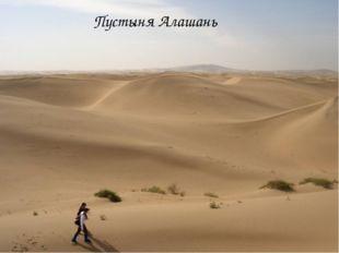 Пустыня Алашань
