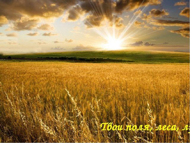 Твои поля, леса, луга