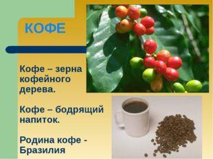 Кофе – зерна кофейного дерева. Кофе – бодрящий напиток. Родина кофе - Бразили