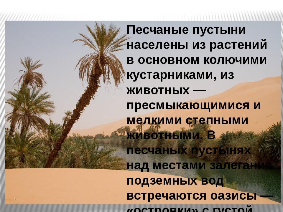 Песчаные пустыни населены из растений в основном колючими кустарниками, из жи...