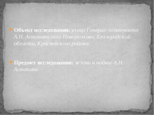 Объект исследования: улица Генерал-лейтенанта А.Н. Астанина села Новоуколово,