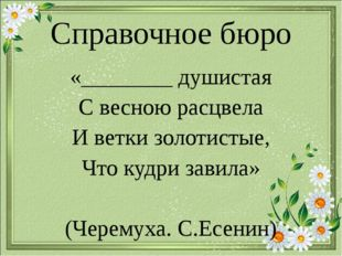 Справочное бюро «________ душистая С весною расцвела И ветки золотистые, Что
