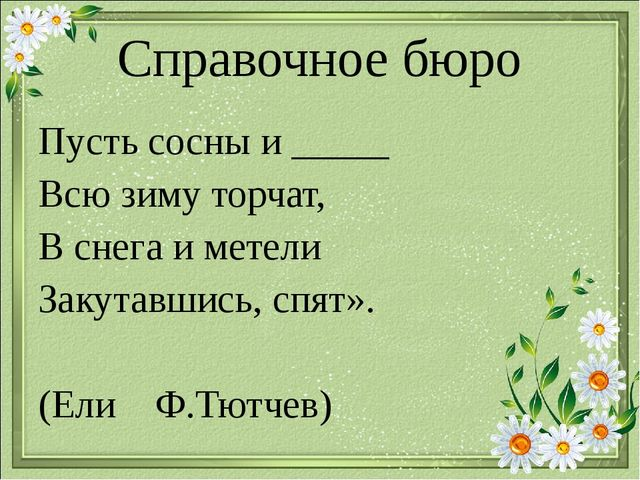 Справочное бюро Пусть сосны и _____ Всю зиму торчат, В снега и метели Закутав...