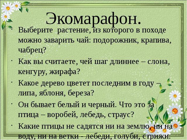 Экомарафон. Выберите растение, из которого в походе можно заварить чай: подо...