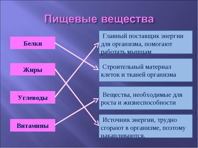 Белки Вещества, необходимые для роста и жизнеспособности Жиры Углеводы Витами...