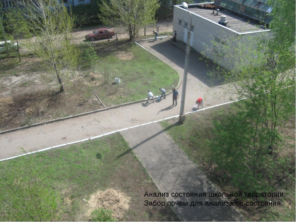 Анализ состояния школьной территории. Забор почвы для анализа ее состояния.