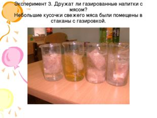 Эксперимент 3. Дружат ли газированные напитки с мясом? Небольшие кусочки свеж