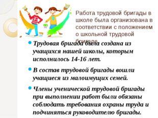 Работа трудовой бригады в школе была организована в соответствии с положением