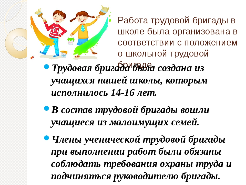 Работа трудовой бригады в школе была организована в соответствии с положением...