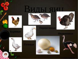 Виды яиц Куриные Гусиные Гусиные Перепелиные Индюшиные Страусиные
