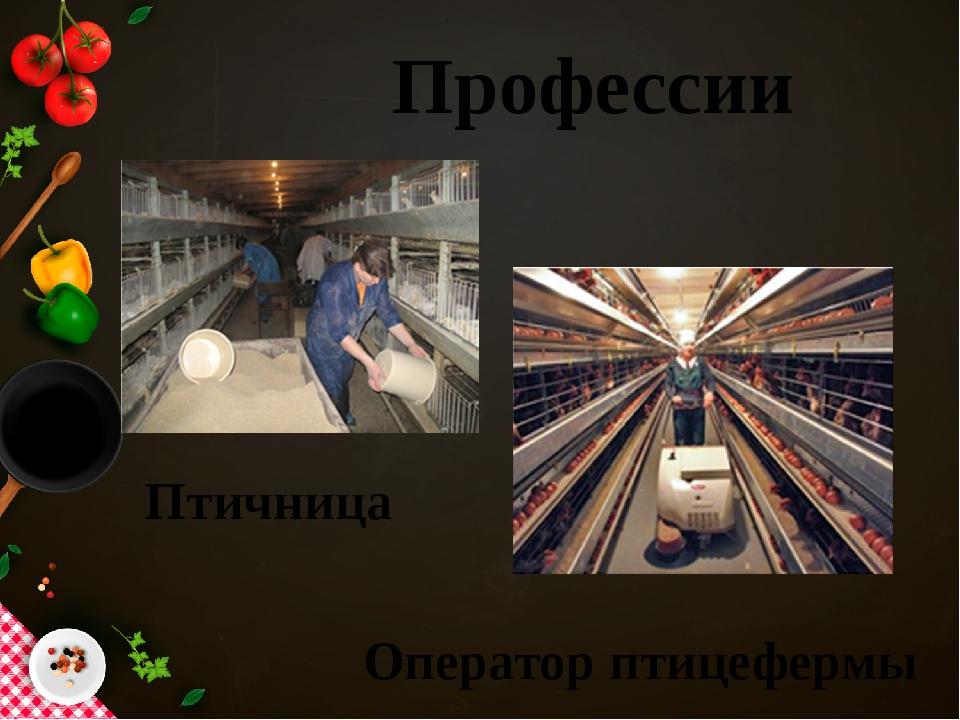 Профессии Птичница Оператор птицефермы