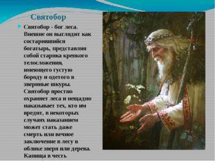 Святобор Святобор - бог леса. Внешне он выглядит как состарившийся богатырь,