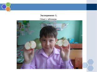 Эксперимент 1. Опыт с яблоком.