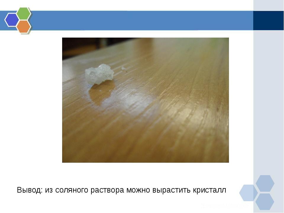 Вывод: из соляного раствора можно вырастить кристалл