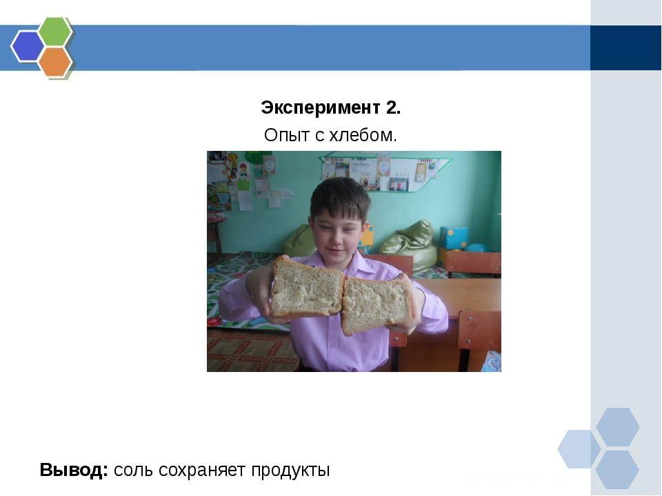 Эксперимент 2. Опыт с хлебом. Вывод: соль сохраняет продукты