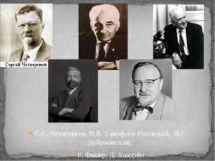 С.С. Четвериков, Н.В. Тимофеев-Ресовский, Ф.Г. Добржанский, Р. Фишер, Д. Холд