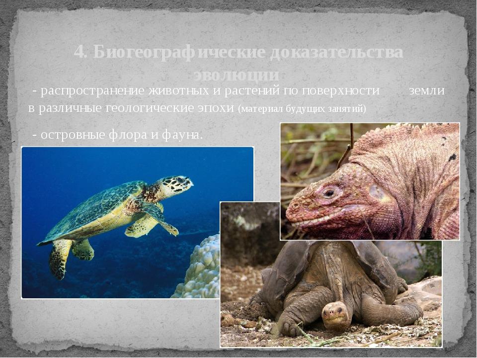 - распространение животных и растений по поверхности земли в различные геоло...