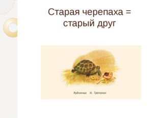 Старая черепаха = старый друг