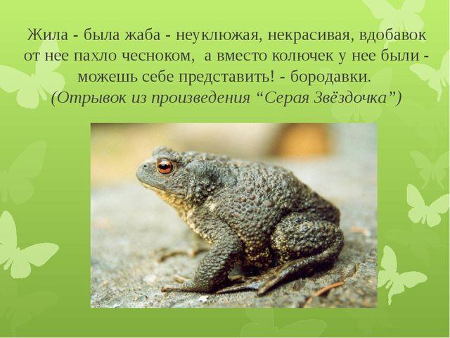 Жила - была жаба - неуклюжая, некрасивая, вдобавок от нее пахло чесноком, а в...