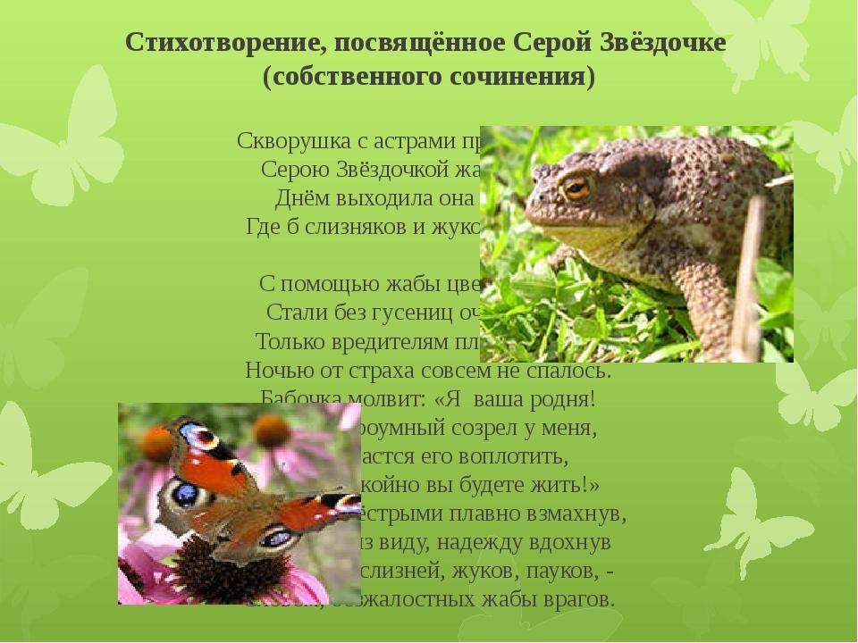 Стихотворение, посвящённое Серой Звёздочке (собственного сочинения) Скворушка...
