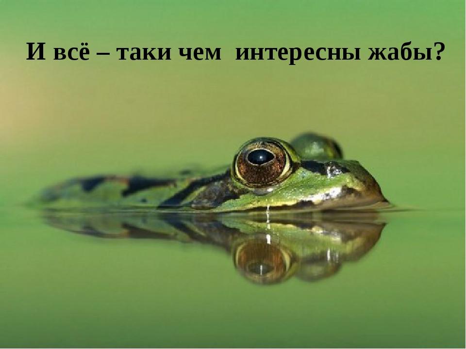 И всё – таки чем интересны жабы?